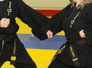 Go Smarts Martial Arts